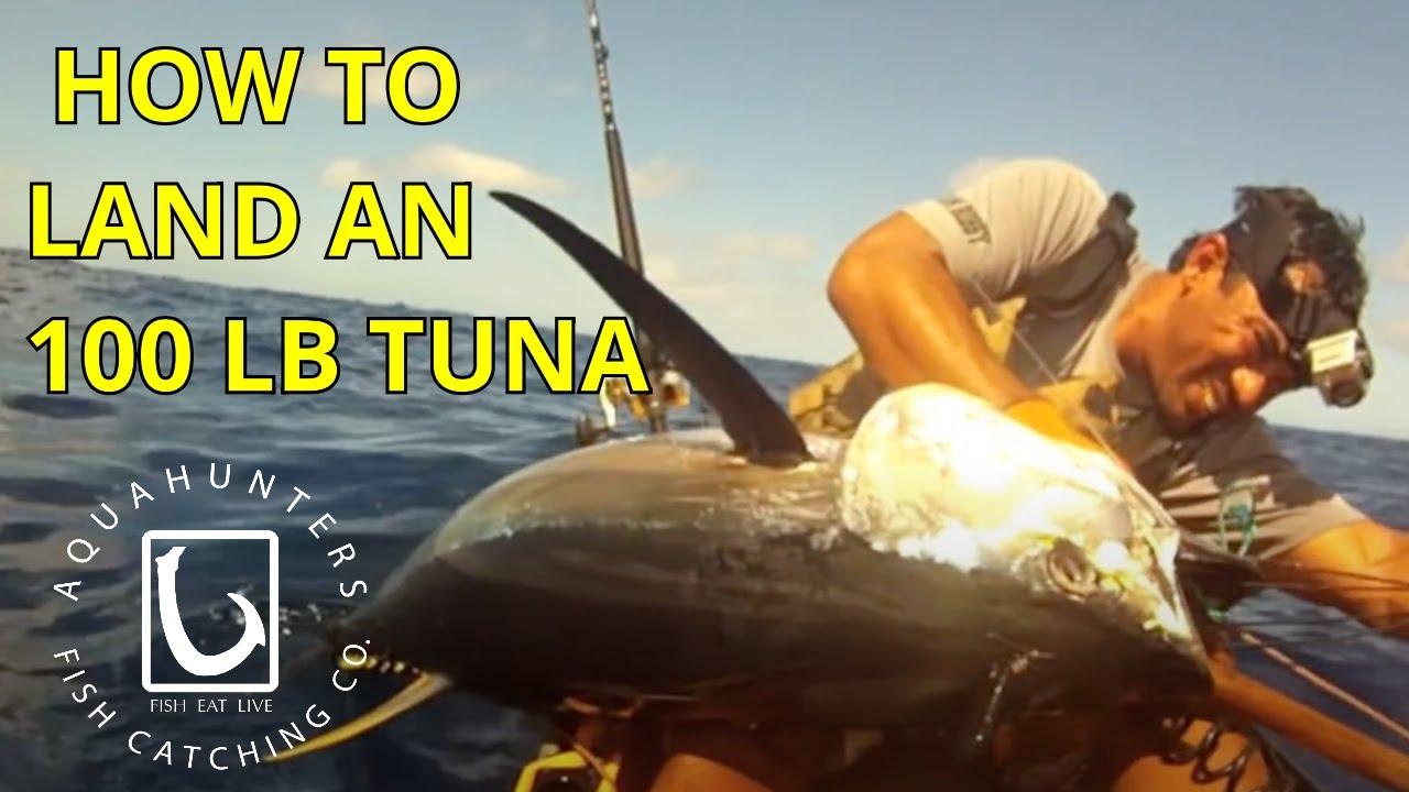 THE OFFICIAL AHTV: Chompy the shark - YouTube