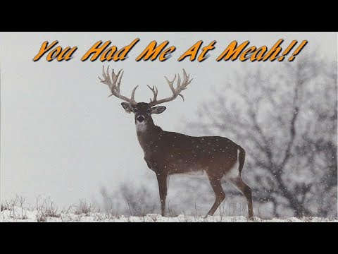 The Funniest Hunting Song of All Time!  You Had Me At Meah!