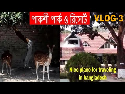পাকশী পার্ক ও রিসোর্ট। Paksi Park And Resort | Amazing Place To Travel In Bangladesh || VLOG-3 ||