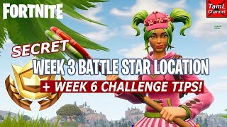 Fortnite: Secret Week 3 Battle Star Location + Week 6 Challenge Tips!
