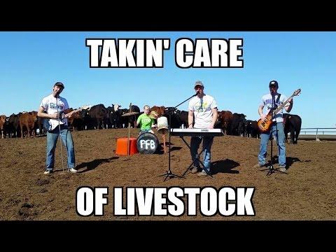 Takin' Care of Livestock – (Takin' Care of Business Parody)