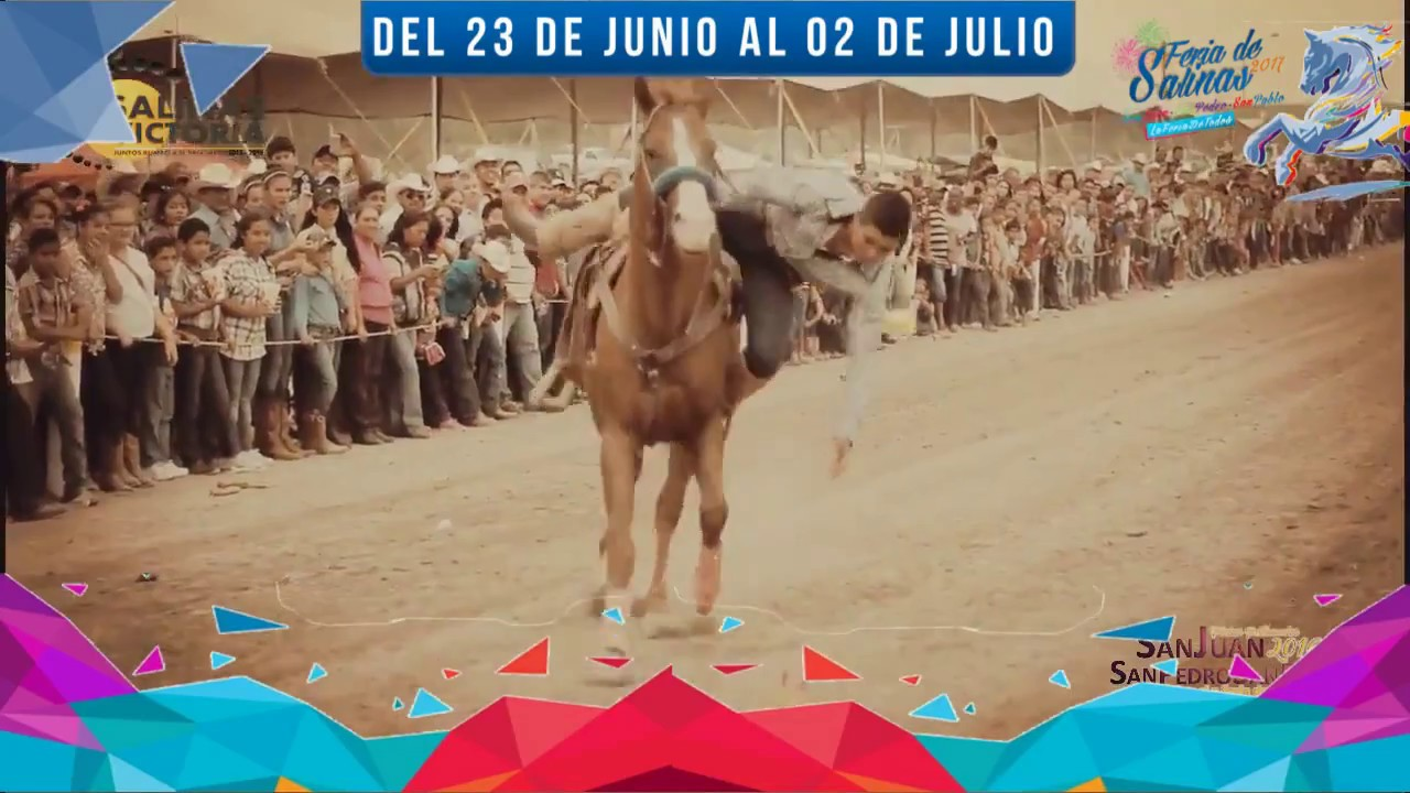 Feria Salinas Victoria 2017