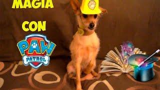 La Patrulla Canina REAL LIFE! Trucos de Magia con Rabbel! Paw Patrol REAL