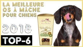 Meilleurs 🔥 Snacks et Friandises pour Chiens 🐶 TOP-6 🔥