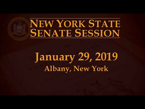 New York State Senate Session - 01/29/19 Mp3