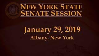 New York State Senate Session - 01/29/19