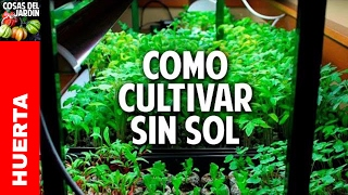 Como hacer un indoor casero paso a paso ideal para germinacion de semillas