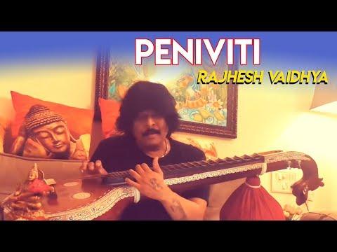 Peniviti - Aravinda Sametha | Veena Cover | Rajhesh Vaidhya