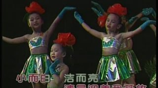 小蓓蕾组合 - 雪绒花