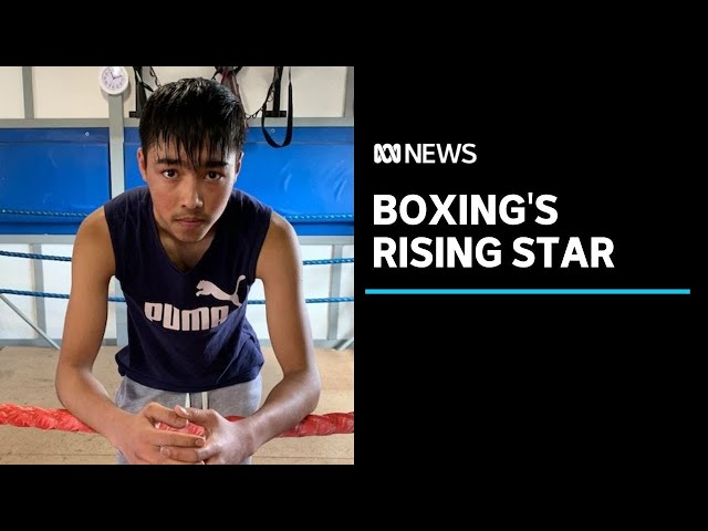 From Afghanistan to Launceston, young Tasmanian boxer aims to be the best in the world | ABC News