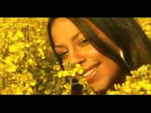Dj Ironik - So Nice Official Remix Video