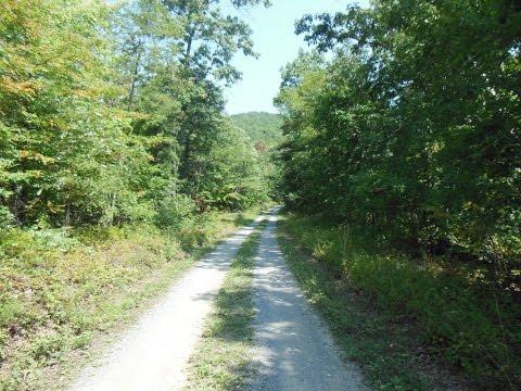 Madison Run Fireroad - Shenandoah National Park