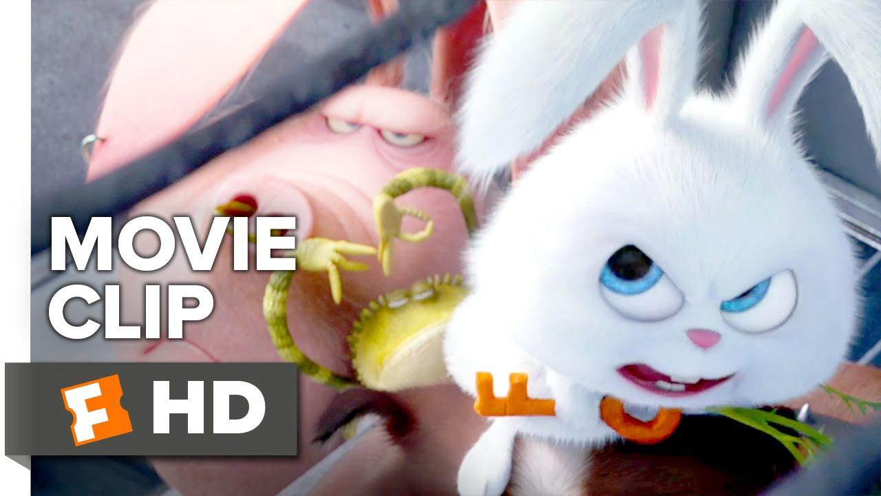 The Secret Life Of Pets Movie Clip The Flushed Pets 2016