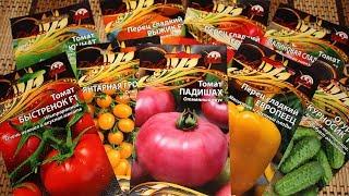 Какие семена выбрать – томаты, баклажаны, перцы и огурцы