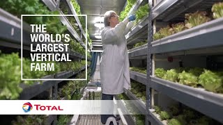 The world's largest vertical farm | Sustainable Energy