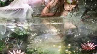Vizililiomok...,-Water lilies...