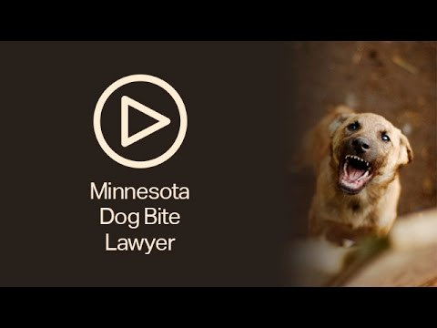 Dog Bite Lawyers MN