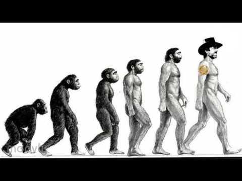 history of human evolution in hindi