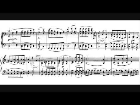 Franz Schubert - Piano Sonata D. 958