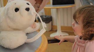 Cuatro robots para tratar el alzheimer y el autismo