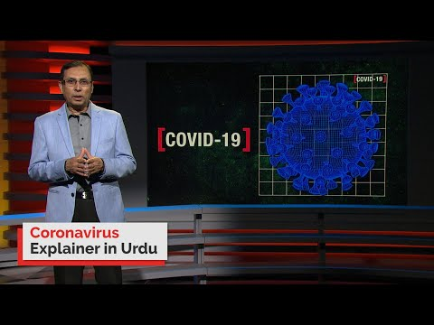 Urdu: Coronavirus Information In Your Language | Information Video | Portal Available Online