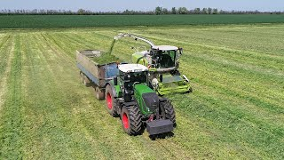 Silage 2019 - Rozs silózás | Claas Jaguár 850 + Fendt 936 + New Holland