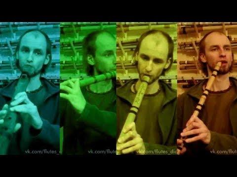 Идеальный бюджетный вариант для начинающих флейтистов. Сейчас купить флейту поперечную несложно, труднее выбрать по-настоящему.