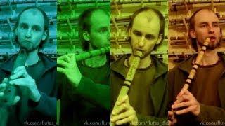 Обзор разных видов флейт сравнение - какую выбрать начинающему