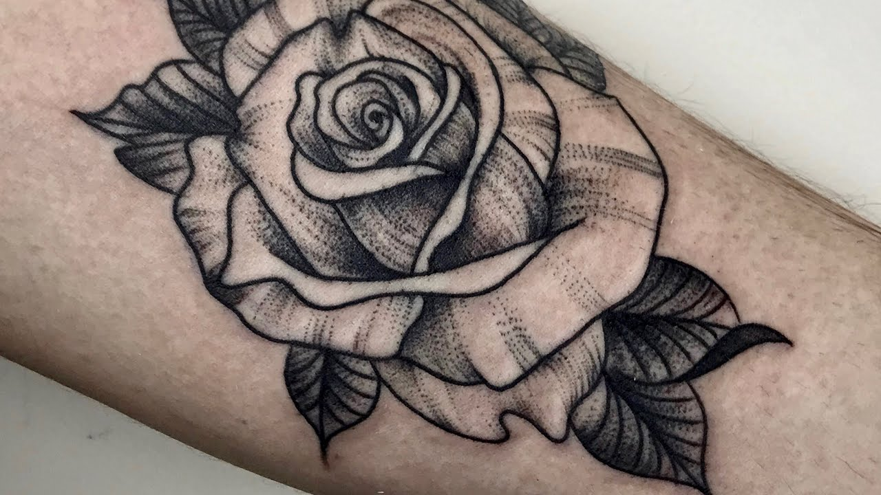 Rose Whip Shading