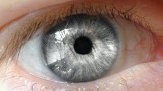 Gözleriniz Hakkında Bilmediğiniz 11 Şaşırtıcı Bilgi