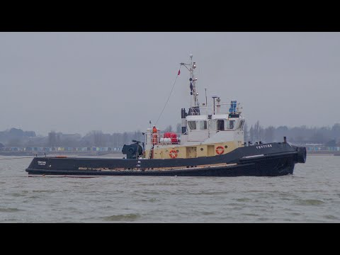 Tug VENTURE tows crane barge through harwich harbour with 2 svitzer tugs 30/1/20