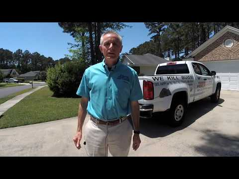 The 6 Reasons You Have Roaches- Savannah Termite and Pest Control
