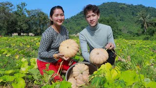 Harvest Fresh Natural Pumpkin From Hill Farm For Tasty Recipe - Cooking With Sros