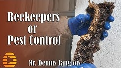 Should Bee removal in Florida be regulated? - beekeepers vs pest control