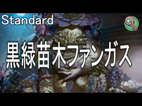 Standard : 黒緑苗木ファンガス / BG Saproling Fungus 【MTG】