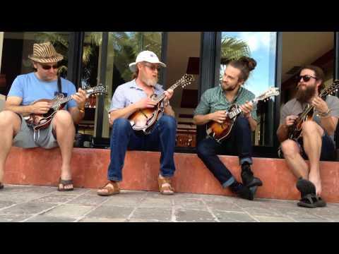 Strings & Sol 2014 - Impromptu 5pc Mandolin Jam