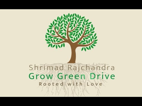 Grow Green Drive - Initiative to plant 2500 trees in a Year at Shrimad Rajchandra Ashram, Dharampur
