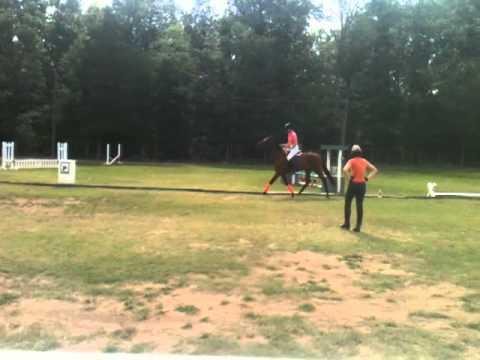 Pam Stone Teaching at Greys N Horses 10