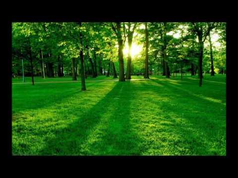 Vinthai Christhu Yesu Raja - Instrumental