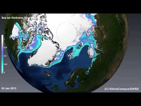 Arctic sea ice 2011-2013: variability of ice concentration and thickness from new satellite data