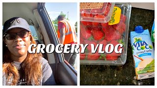 PICKING UP GROCERIES AT WALMART | GROCERY HAUL | NEW OUTDOOR CEILING FAN