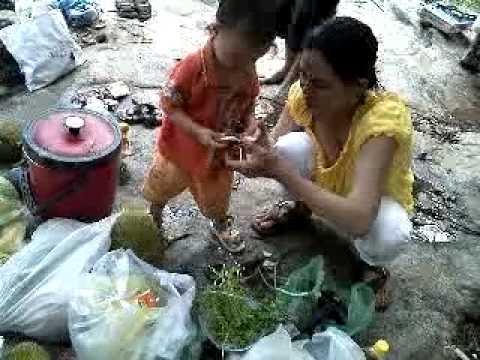 len rung tam suoi 04 08 2011