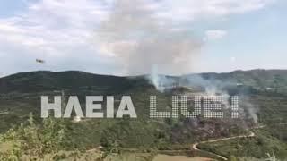 ilialive.gr - Φωτιά στο Κλεινδιά