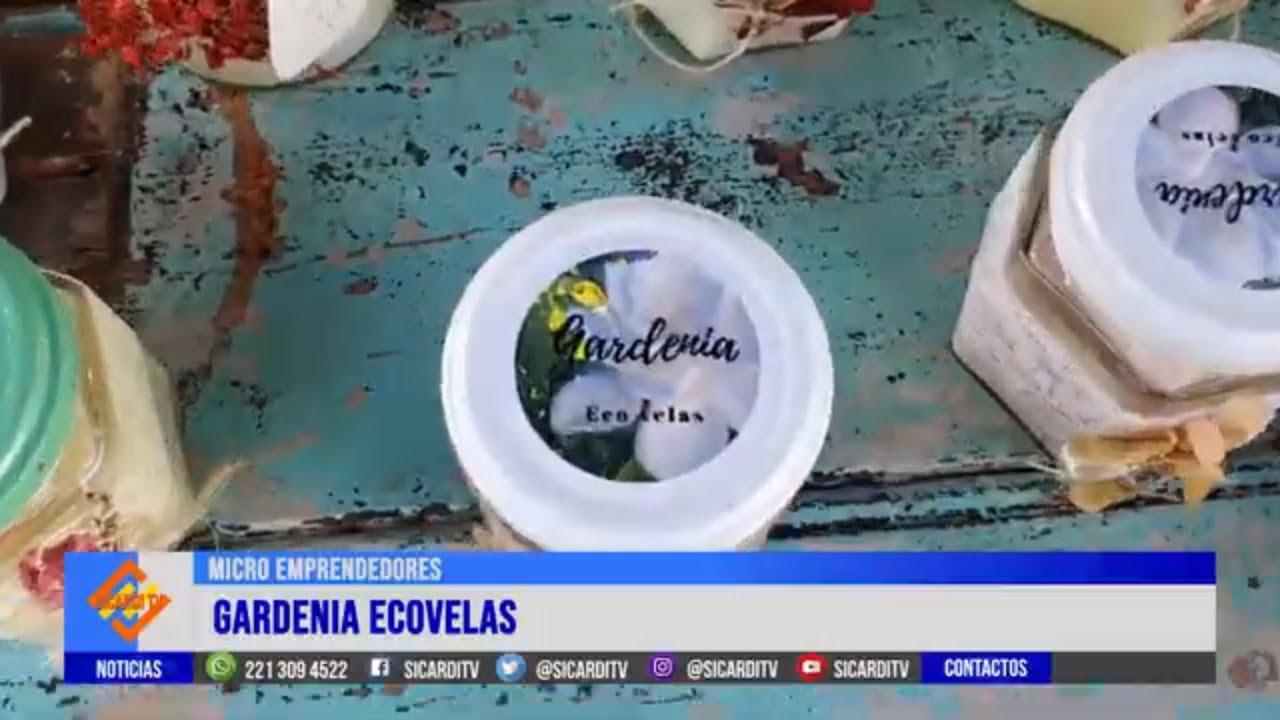 MICRO EMPRENDEDORES: Hoy Gardenia, ecovelas