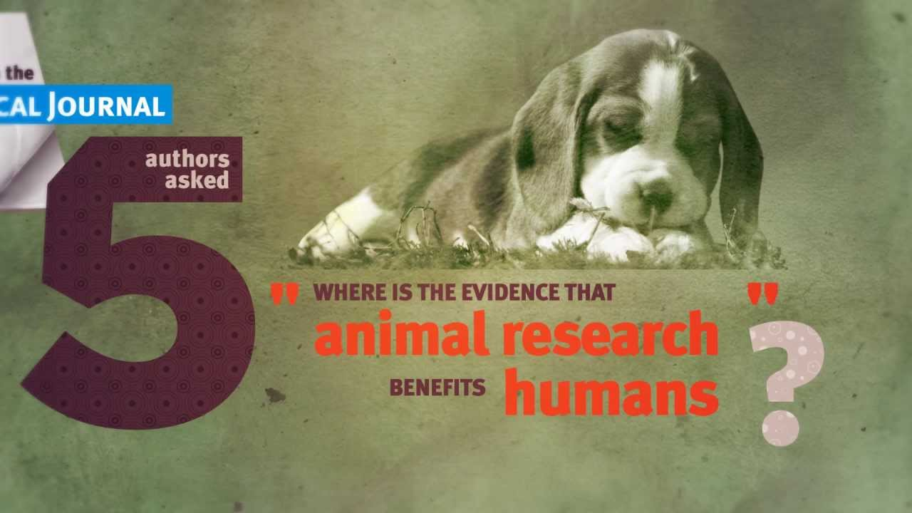 animal testing the facts Animal testing, also known as animal experimentation, animal research and in vivo testing, is the use of non-human animals in experiments that seek to control the.