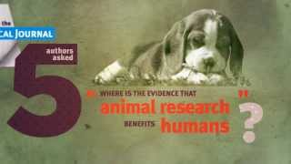 ANIMAL TESTING: some facts