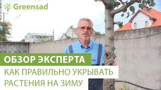 Как правильно укрывать растения на зиму(В этом видео наш эксперт расскажет и покажет Вам как правильно укрывать растения на зиму, большой выбор..., 2014-10-31T08:20:49.000Z)