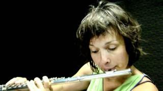 Pixinguinha-VOU VIVENDO-Juliette Mathoret e Tarcisio Sardinha-PROGRAMA BRASILEIRINHO.mp4