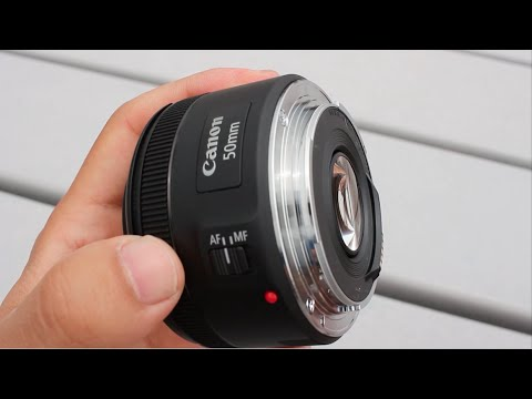 A Day With the Canon 50mm f1.8 STM