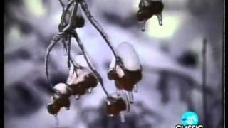 Silent Night - Mannheim Steamroller (Official Music Video - 1984)